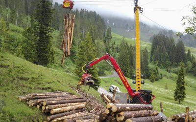 Torres Forestales Konrad: Adelantando el futuro