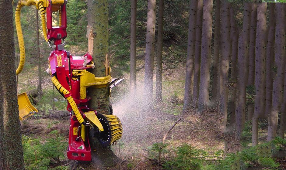 Konrad Cabezal Forestal Woody